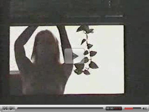 Window Peeping - Topless Girl
