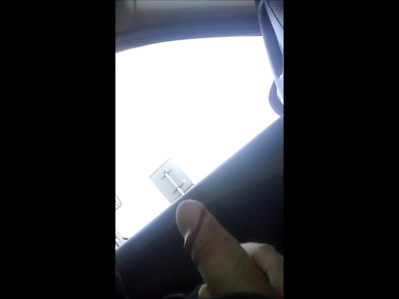 flash dick in car for nice milf
