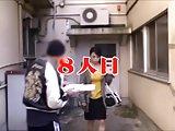 Japanese Street Survey