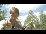 boy scouts wooding it