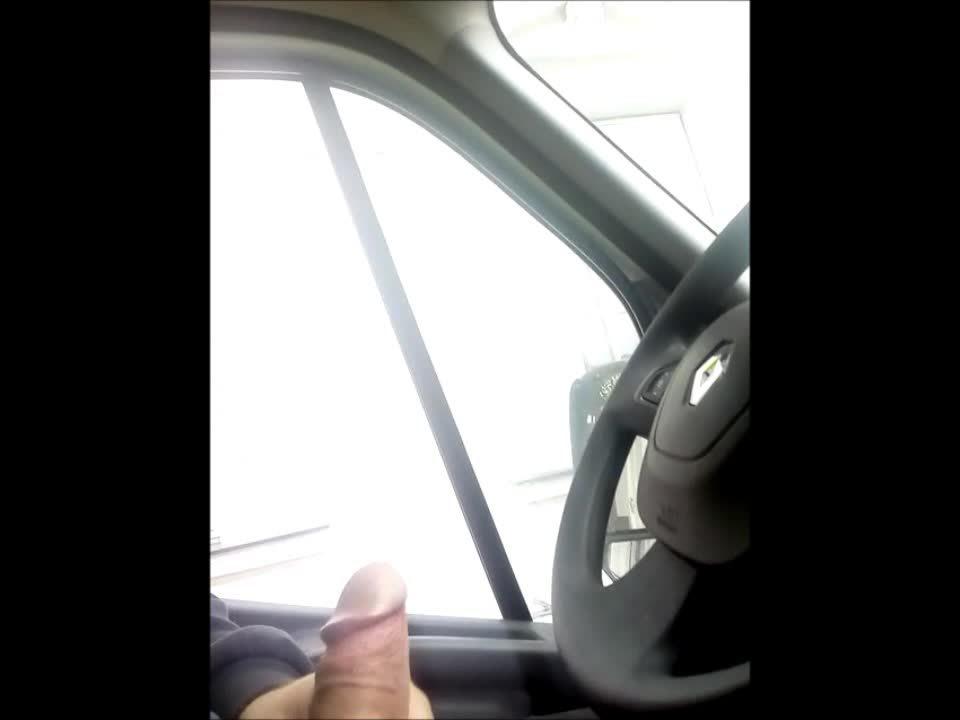 dick flash in car for cute danish girl