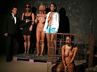 Slave Whipping Hogtied vid: The Slave Auctions