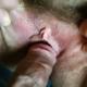 jojotoulouse