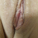cucko80